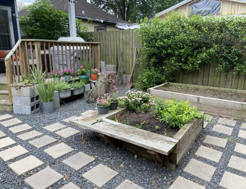 Get Down in the Garden:  Beat Seasonal Back Pain with these 3 Tips
